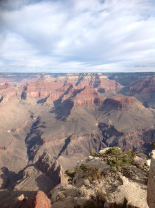 Grand Canyon Picrotate